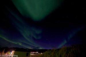 north lights-5896